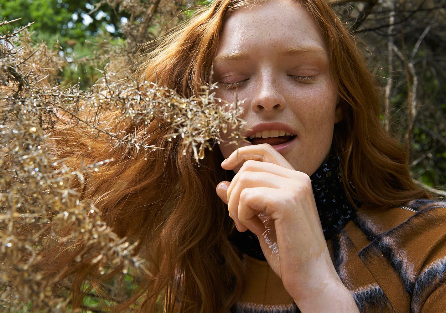 Harvest - © Amanda Camenisch